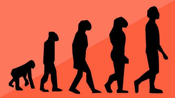 Evolution-HR-dynamics